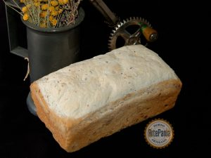 pan eco no gluten con semillas